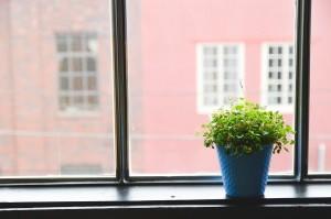 window-593364_1280